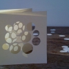 50x75cm paper, timber, sunlight